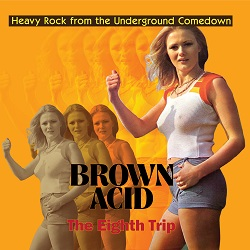 VARIOUS... - BROWN ACID: THE EIGHTH...