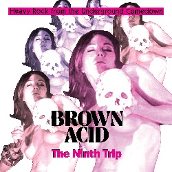 VARIOUS... - BROWN ACID: THE NINTH...