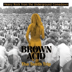 VARIOUS... - BROWN ACID: THE TENTH...