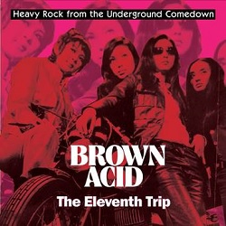 VARIOUS... - BROWN ACID: THE ELEVENTH...
