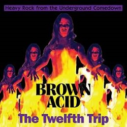VARIOUS... - BROWN ACID: THE TWELFTH...