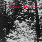 SIX ORGANS OF ADMITTANCE... - S/T...