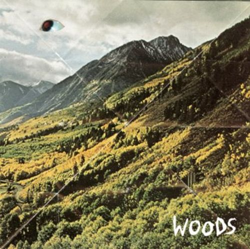 WOODS... - SONGS OF SHAME...