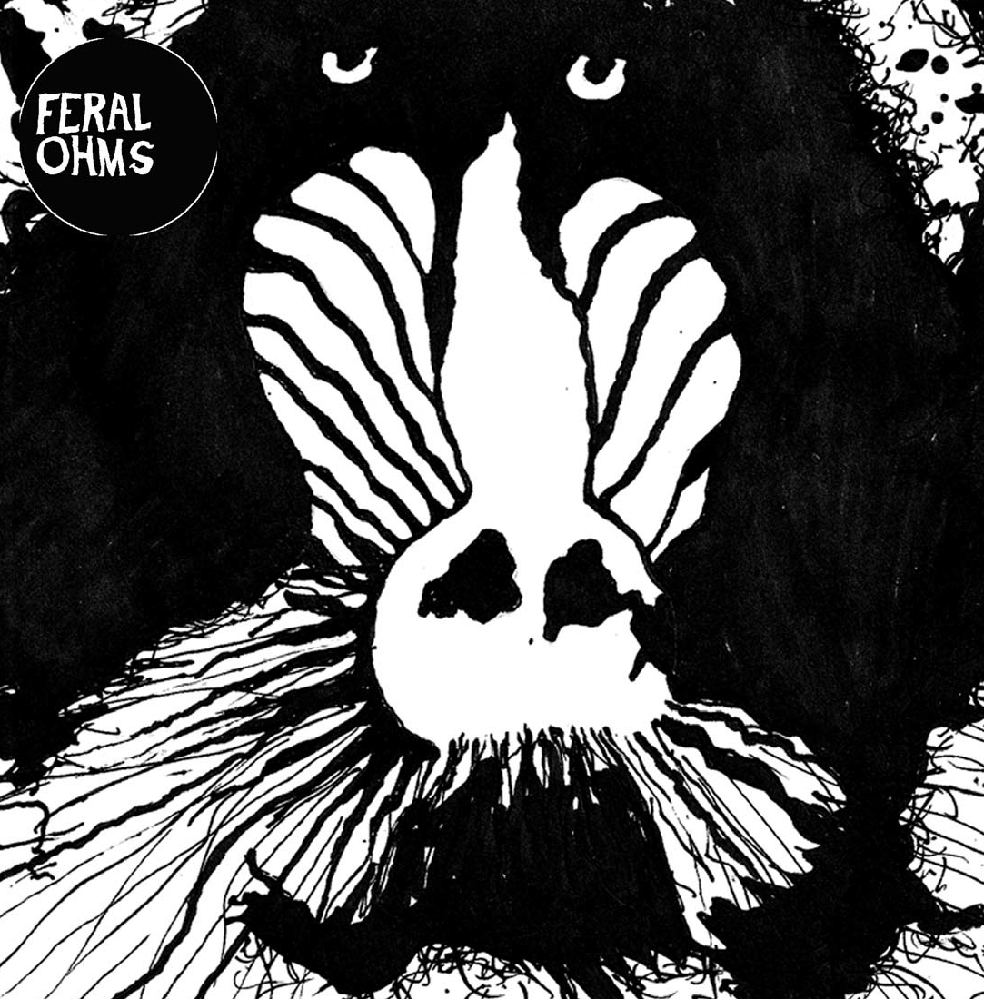 FERAL OHMS... - SUPER APE / THE...