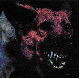 PROTOMARTYR... - UNDER COLOR OF OFFICIAL...