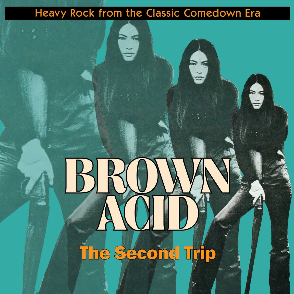 VARIOUS... - BROWN ACID: THE SECOND...