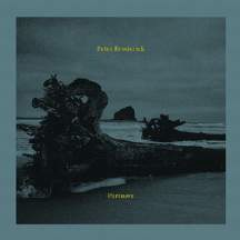 PETER BRODERICK... - PARTNERS...