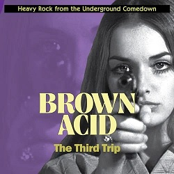 VARIOUS... - BROWN ACID: THE THIRD...