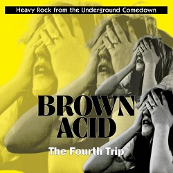 VARIOUS... - BROWN ACID: THE FOURTH...
