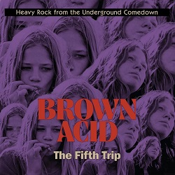 VARIOUS... - BROWN ACID: THE FIFTH...