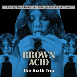 VARIOUS... - BROWN ACID: THE SIXTH...