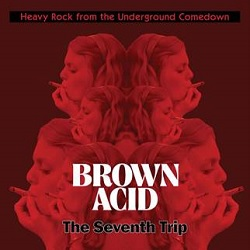 VARIOUS... - BROWN ACID: THE SEVENTH...